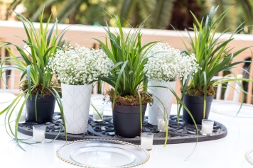 Babies breath, spider plants, a piece of black iron and votives makes an affordable table arrangement.