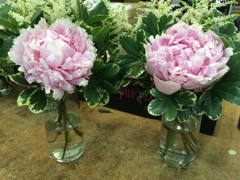 Recent bridesmaids bouquets by Bluegrass Chic made with Sarah Bernhardt Pink peony, white astilbe and variegated pittosporum.