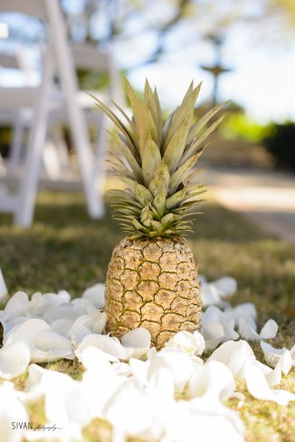 Gold pineapples with puddles of white rose petals down the aisle.